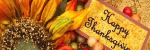 Happy Thanksgiving From Spa Warehouse